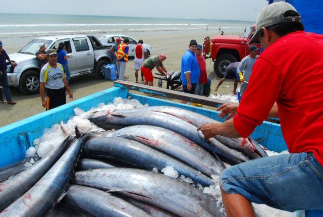 Poca pesca afecta la economía