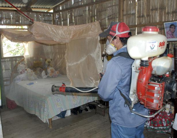 Confirman quinta muerte por dengue hemorrágico