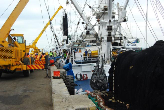 36 barcos se acogen desde mañana a la veda del atún