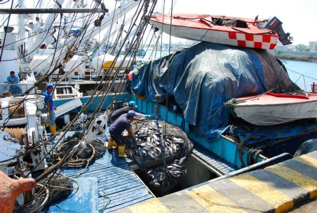 Atuneros podrán pescar en el Pacífico occidental
