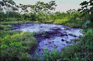 Demandantes presentarán acción de cobro contra Chevron