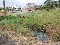 Denuncian contaminación en ciudadela María Luisa