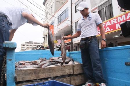 Decomisan pescado en mal estado