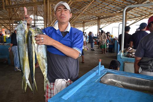 Pesca del pescado dorado entra a veda desde mañana