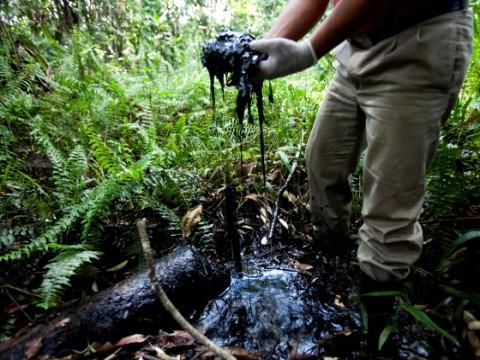 La petrolera Chevron no se disculpará por contaminar la Amazonía ecuatoriana