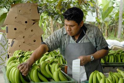 Ecuador suma superávit comercial de $120 millones