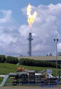 Petroamazonas invertirá 1 055 millones para producir 58 millones de barriles en el 2012
