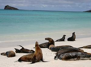 En Galápagos se previenen tsunamis