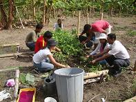 30 familias tendrán huertos en sus patios
