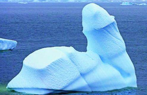 Causa asombro un iceberg en forma de pene