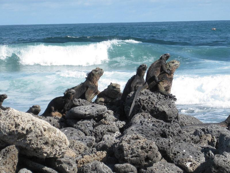 Derrame de combustible en Galápagos es controlado