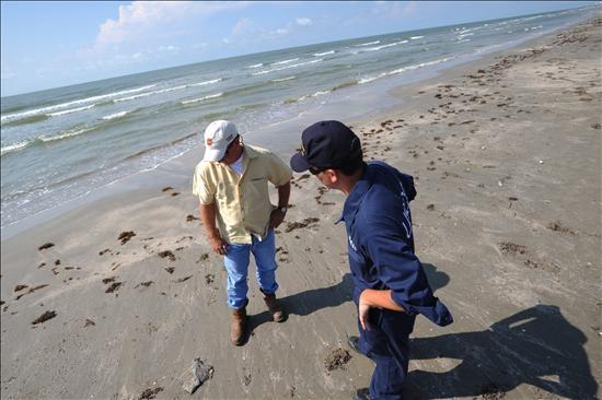 Marea negra alcanza a todos los estados costeros de EE.UU. en Golfo de México