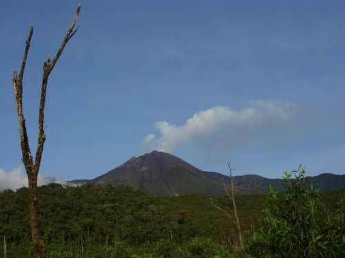 Aumenta la actividad en el volcán Reventador