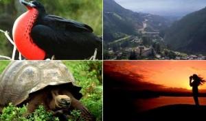 Organización Mundial de Turismo respalda a Ecuador como sede de tres citas internacionales