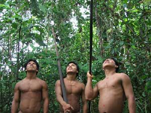 Defensoría del Pueblo denuncia venta de ADN de waorani