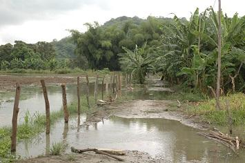Más de cuatro mil hectáreas afectadas por el invierno