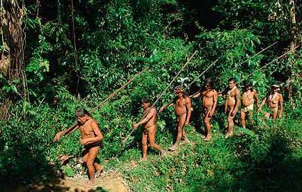 Autoridades no pueden llegar al lugar de enfrentamiento Huaorani-Taromenane