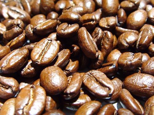 Ecuador importa dos tipos de semillas de café