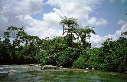 FIA respalda proyecto de protección ambiental en Ecuador