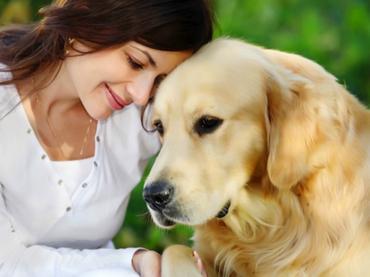 Científicos buscan que olfato de perros ayude a detectar el cáncer de ovario