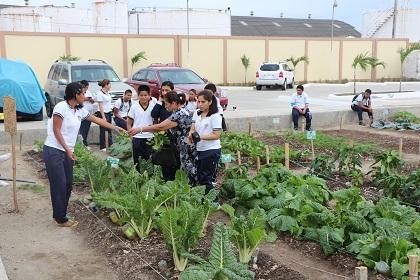 Estudiantes de Bahía de Manta elaboran huertos caseros