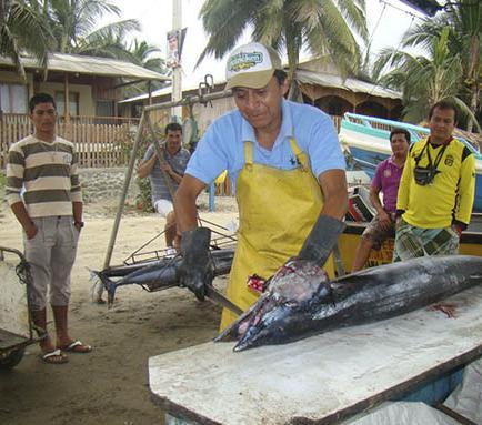 La pesca del wahoo  fortalece la economía