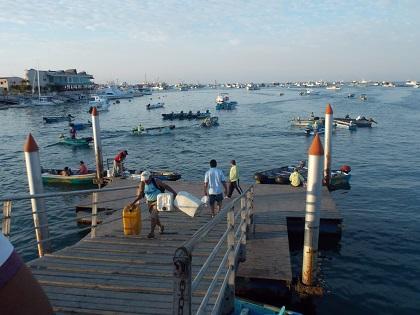 Pescadores sugieren implementar plan para reactivar el turismo en el muelle