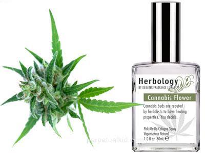 Crean perfume con olor a marihuana