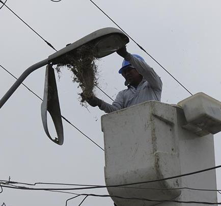 Reparan más de 30 lámparas en la ciudad