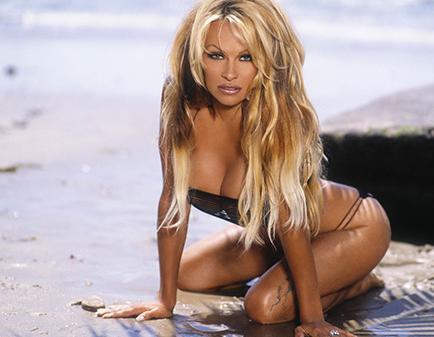 Pamela Anderson ahora es dueña de escudería