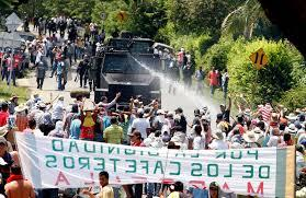 Sector agropecuario colombiano inicia huelga