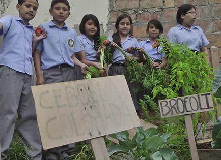 Estudiantes crean y mantienen huerto escolar