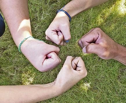 Solidaridad y respeto social