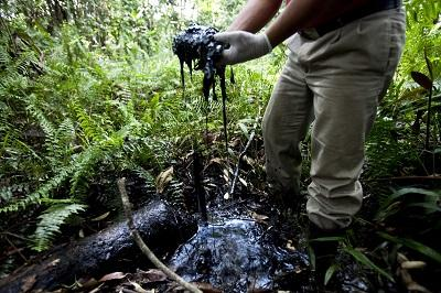 Artistas recogerán fondos para apoyar a afectados por Chevron