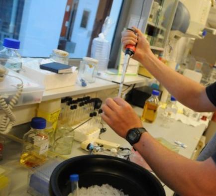 Inmunoterapia y génetica, mayores avances del 2013