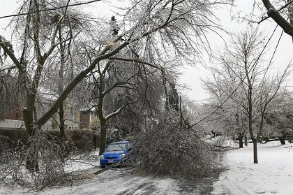 200.000 personas pasarán la Navidad sin electricidad en Toronto