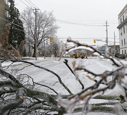 Tormenta de hielo  causa el caos en Toronto