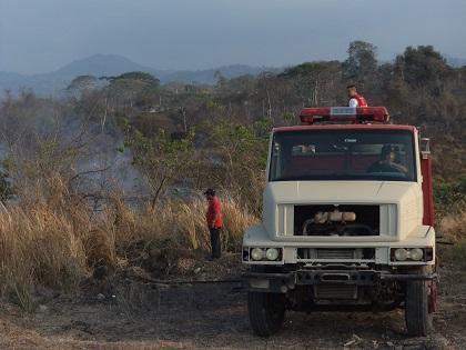 Hay preocupación por incendios forestales en Pedernales