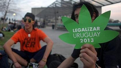 El 66% de uruguayos se opone a la legalización de la marihuana, según sondeo