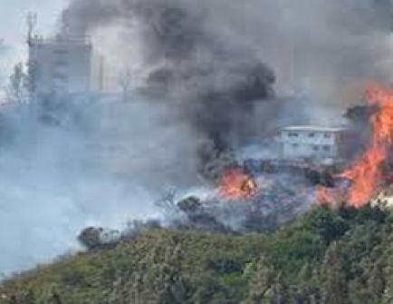 Destruidas 14 viviendas y cien evacuadas por incendio forestal en Valparaíso