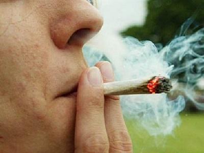 Descubren hormona capaz de reducir el efecto psicoactivo de la marihuana