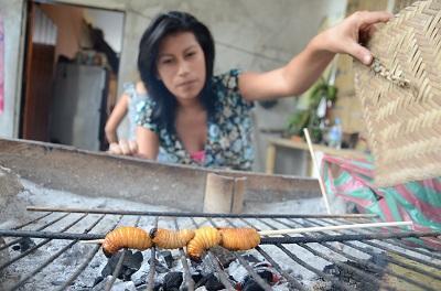 Mayón: el manjar de la etnia Tsáchila de Santo Domingo