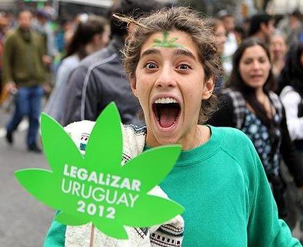 Uruguay recibe propuestas internacionales para comprar marihuana medicinal