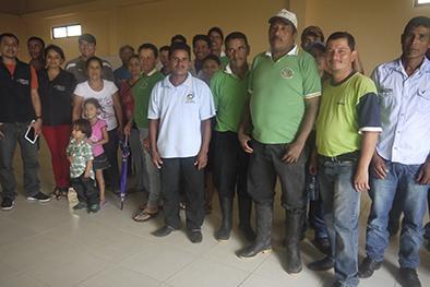 Sembrarán un millón de plantas de café en 350 hectáreas en Pichincha