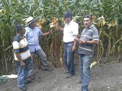 Agricultores conocen manejo de parcelas