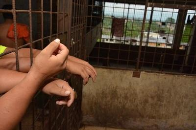 Detienen al presunto violador de una niña de 11 años
