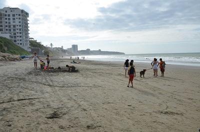 Sigue la presencia de perros en la playa a pesar de las prohibiciones
