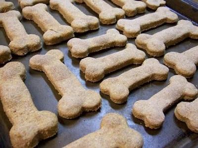 Asistente escolar dio galletas de perro a 75 niños en Estados Unidos