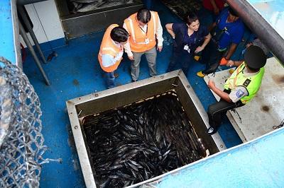 Autoridades detectan irregularidades en barcos atuneros