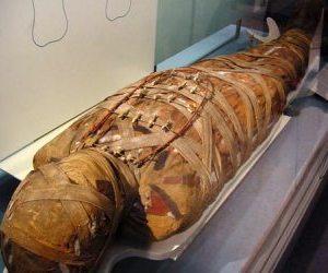 Una mujer vivió con su madre momificada durante dos años